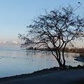 zmierzch nad jeziorem