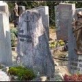 na szwajcarskim cmentarzu