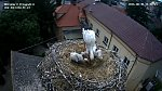 http://images71.fotosik.pl/541/fd06e5e67a42873fm.jpg