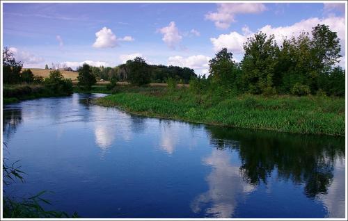 Rzeka Drwęca.