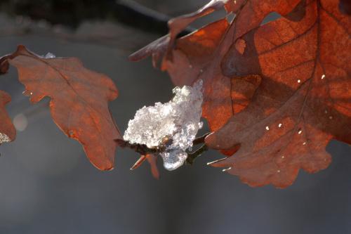 Jesienno-zimowo.