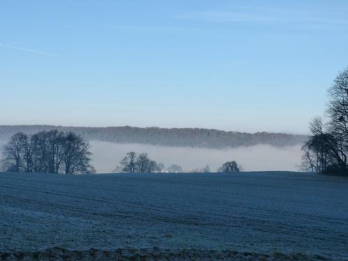 domy przykryte mgłą