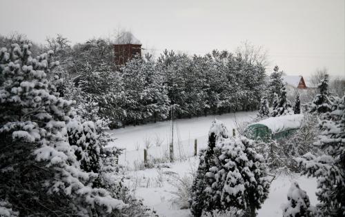 A taki widok miałam dziś z okna;